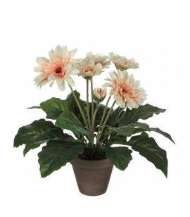 Gerbera Cream - Flori artificiale in ghiveci