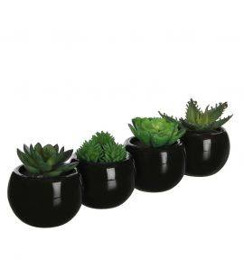 Set 4 plante artificiale suculente in ghiveci H 7 cm